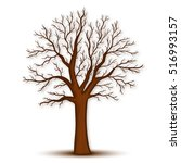 tree without leaves vector | Shutterstock .eps vector #516993157