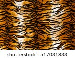 close up shot of tiger print... | Shutterstock . vector #517031833