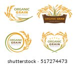 yellow paddy rice organic grain ... | Shutterstock .eps vector #517274473