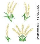 rice set. vector | Shutterstock .eps vector #517328227