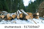 A Pile Of Pine Logs In Winter...
