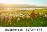 morocco  2014   shepherd on... | Shutterstock . vector #517344673