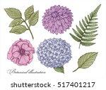 botany. set. vintage flowers.... | Shutterstock .eps vector #517401217