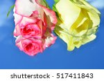 roses reflected in pure water  | Shutterstock . vector #517411843