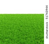 green grass isolated on white | Shutterstock . vector #51743944