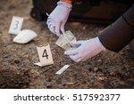 crime scene investigation  ...   Shutterstock . vector #517592377