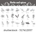herbs and spices set. hand... | Shutterstock .eps vector #517612057