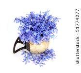 blue flowers in the vase | Shutterstock . vector #51774277
