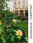 Roses At Churchyard Of Bristol...