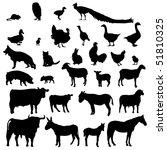 farm animals | Shutterstock . vector #51810325