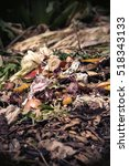 Small photo of Bio waste warm tones, organic waste with pieces of lemons, onions and others fruits in decomposition.