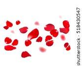 Red Rose Falling Petals Agains...