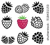 raspberry fruit icon collection ... | Shutterstock .eps vector #518431153