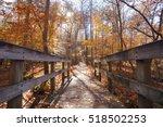 Bridge To The Woods