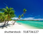 Palm Trees Over White Beach On...