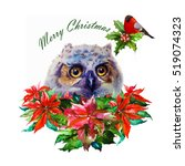 christmas background with owl ... | Shutterstock . vector #519074323
