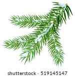 snow lies on spruce branch.... | Shutterstock .eps vector #519145147