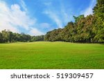Sky And Green Grass Field In...