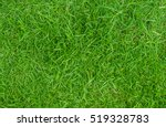 green lawn backyard for... | Shutterstock . vector #519328783