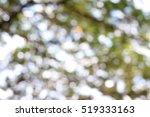 beautiful bokeh from trees in a ... | Shutterstock . vector #519333163