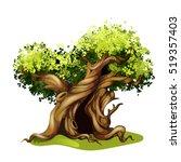 Cartoon Style Oak Illustration...