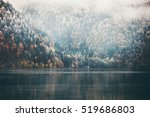 foggy coniferous forest and... | Shutterstock . vector #519686803