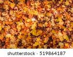 autumn leaves background. ... | Shutterstock . vector #519864187