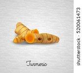 turmeric plants. vector...   Shutterstock .eps vector #520061473