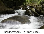 Spring Forest Waterfall Rocks