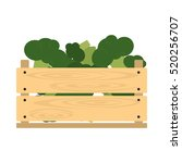 vector crate with fresh... | Shutterstock .eps vector #520256707
