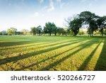 Wonderful Green Park Landscape...