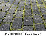Stone Garden Path With Moss In...