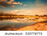 large pond in the forest area | Shutterstock . vector #520778773