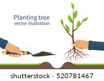planting tree  sapling with... | Shutterstock .eps vector #520781467