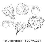 vegetables drawing vector...   Shutterstock .eps vector #520791217