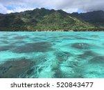 bora bora   Shutterstock . vector #520843477
