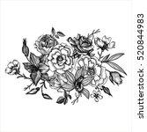 vintage vector floral... | Shutterstock .eps vector #520844983