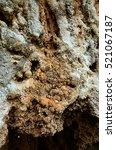 Small photo of karst cave, cave, littoral deposits, pelagic deposits