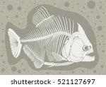 piranhas skeleton | Shutterstock .eps vector #521127697