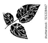 hand drawing peonies. vector... | Shutterstock .eps vector #521228467