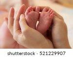 newborn feet in hands | Shutterstock . vector #521229907