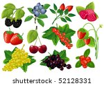 vector berries huge collection. | Shutterstock .eps vector #52128331