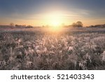 Sun Rising Above Frosty Field....