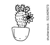 cactus texture. cactus color...