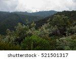 sopo  cundinamarca  colombia ... | Shutterstock . vector #521501317