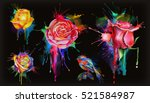 watercolor roses  set of vector ... | Shutterstock .eps vector #521584987