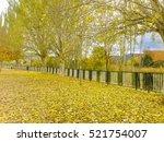 walking in the park in autumn | Shutterstock . vector #521754007