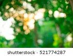 green bokeh  abstract... | Shutterstock . vector #521774287