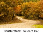 Dirt Road In The Fall