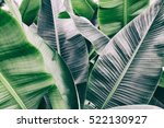 details of big green leaf  leaf ... | Shutterstock . vector #522130927